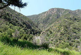 Arroyo Seco CA low