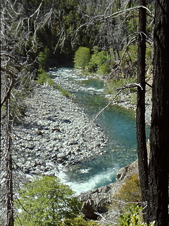 Chetco River Kalmiopsis Wilderness OR
