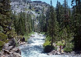 Fordyce Creek CA