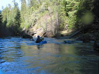 South Fork Gualala River CA