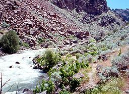 Jarbidge into Bruneau River ID