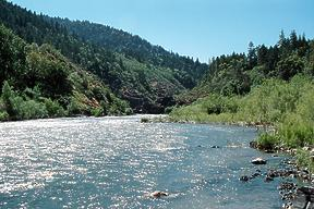 Rogue River near Grants Pass OR
