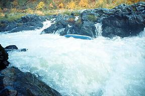 Rogue River Rainey Falls OR